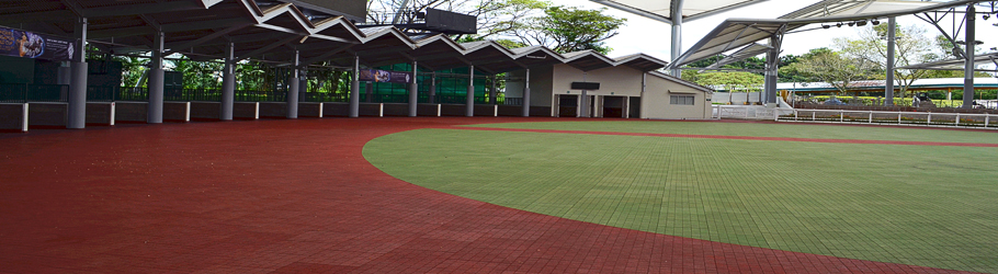 Singapore Turf Club Parade, Singapore - Versatile™ Royal BRT Rubber Tiles