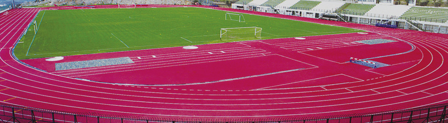 2004 Athens Olympics Training Track, Decoflex™ SW14 Athletic Flooring